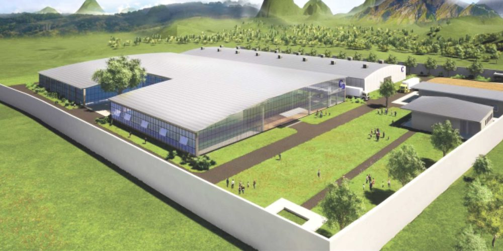 Candor New Factory